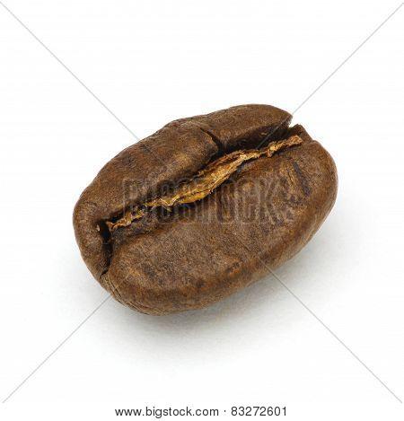 Roasted coffee bean macro shot