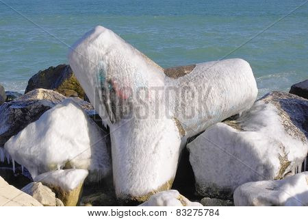 Frozen Tetrapod  In Winter Day