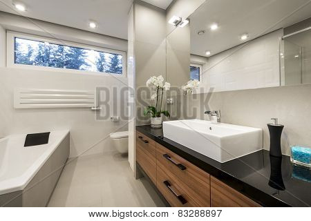 Modern Luxury Bathroom   Interior Design