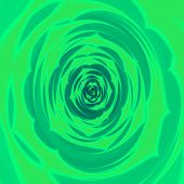 picture of rosettes  - Abstract green fractal background like green leafy rosette - JPG