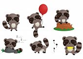picture of raccoon  - a raccoon vector set with many style - JPG