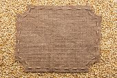 foto of stitches  - Figured frame with burlap and stitches with place for your text lying on barley grains as a background - JPG