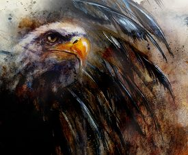 foto of bald headed  - painting eagle with black feathers on an abstract background USA Symbols Freedom profile portrait - JPG