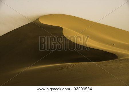 Gold Dune