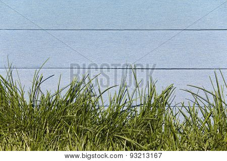 Fresh Grass And Blue Wooden Fence In Horizontal Format