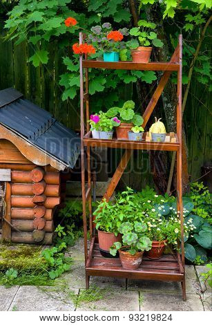 Fragment Of Beautiful Garden With Dog House