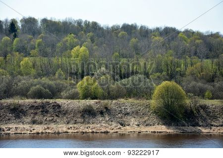 Volkhov River Shore. Spring Time, Top View