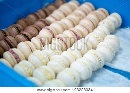 Macaroons Chocolate And Vanilla In A Tray