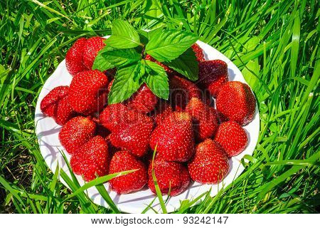 A cup of strawberries on a green lawn