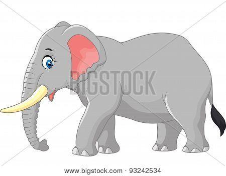 Cartoon large elephant