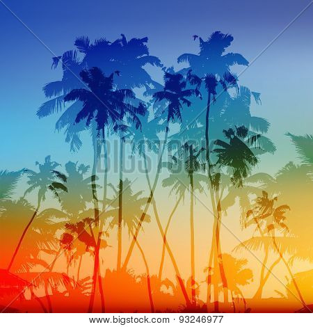 Vector palms silhouettes tropical sunset background