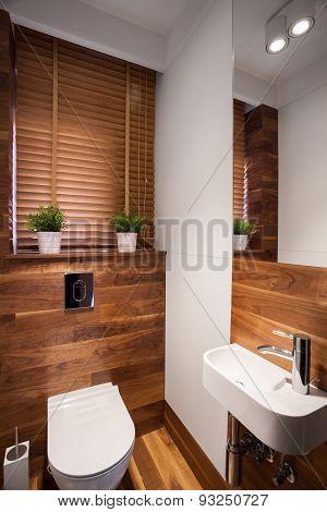 Modern Wooden Restroom