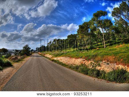 Road In A Field In Hof Hacarmel Near Haifa, Israel