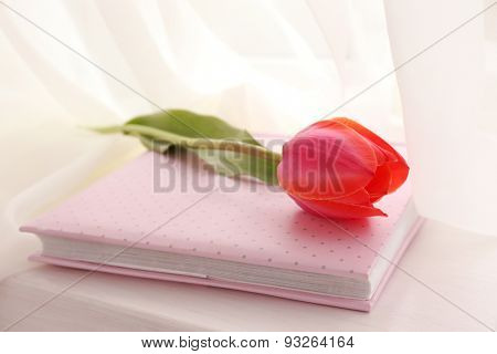 Beautiful red tulips and pink album on windowsill, closeup