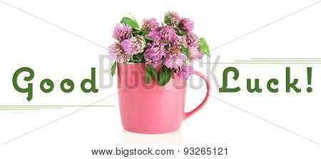 Clover flowers in cup isolated on white with text Good Luck