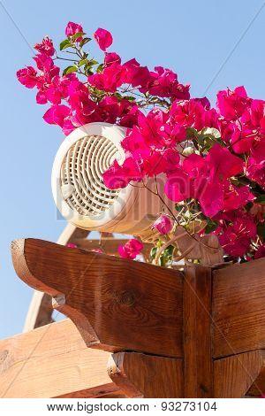 Outdoor Loudspeaker Hidden Among Flowers.