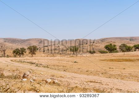 Lonely Road In The Negev Desert
