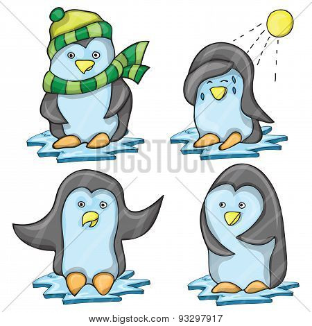 Penguin in Several Poses
