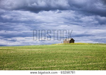 Palouse Farm Building And Field