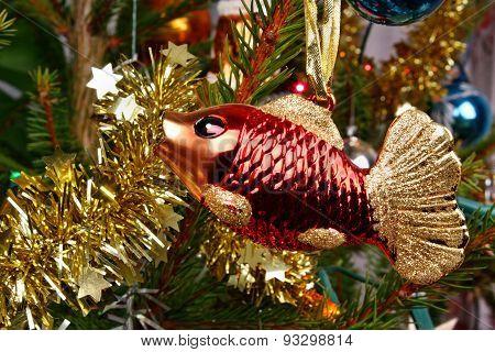 Christmas Fish Carp