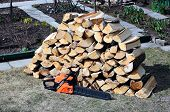 image of chainsaw  - Stabel of chopped birch wood and a chainsaw in the yard - JPG