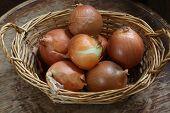stock photo of onion  - Onions bulbs in a wattled basket - JPG