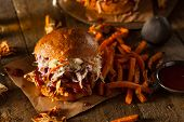 image of pulling  - Homemade Pulled Chicken Sandwich with Coleslaw and Fries - JPG