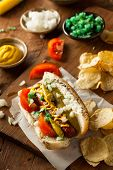image of wiener dog  - Homemade Chicago Style Hot Dog with Mustard Relish Tomato and Onion - JPG