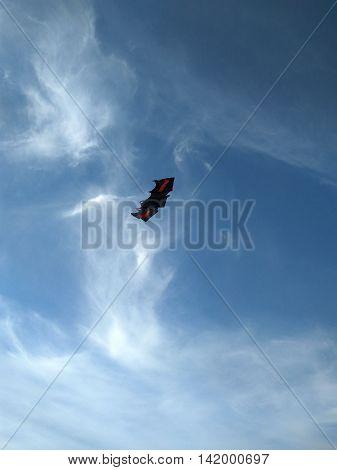 blue sky hovering kite as a black bat