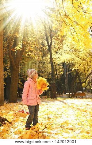 little girl walks in the autumn park