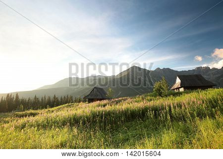 The historical shepherd's huts in the valley surrounded by Tatra Mountains. August.