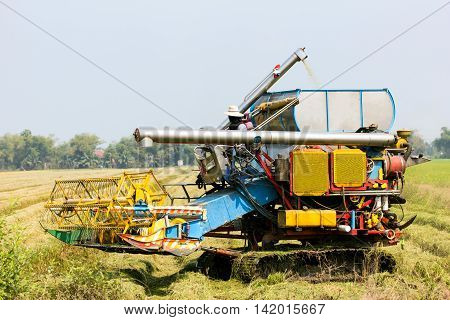 combine harvester in the rice field, agricultural