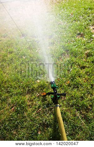 Closeup of a sprinkler watering a garden.