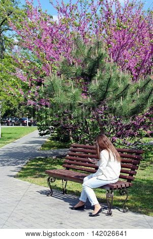 Young girl sitting on brown wooden bench in shade of flowering bush in alley south of park resort town and looking for information in your phone
