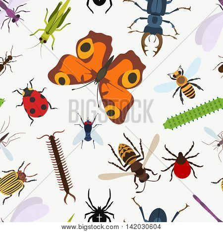 Garden insects seamless pattern. lady beetle and dragonfly, Lucanus cervus and wasp or bee, coccinellidae or ladybug, araneus orb spider and grasshopper, larvae and stag beetle, moth and bumblebee