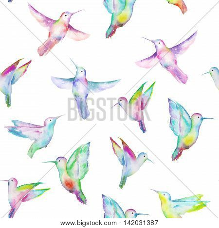 Seamless pattern of colored colibri, hand painted in a watercolor on a white background