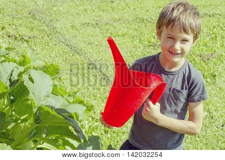 Cute little boy watering vegetables watering can. Healthy, gardening, lifestyle concept