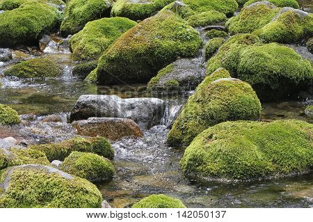 Water flowing over stones overgrown with moss. A mountain stream at the foot of the Tatra Mountains.