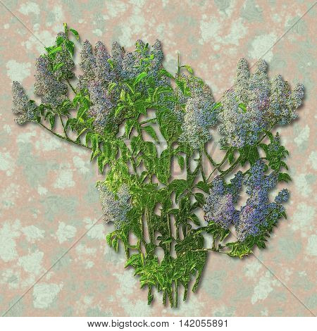 Pink relief lilac on a grunge spotted watercolor background Blue and white relief embossed flowers and green leaves on a green and pink mottled background