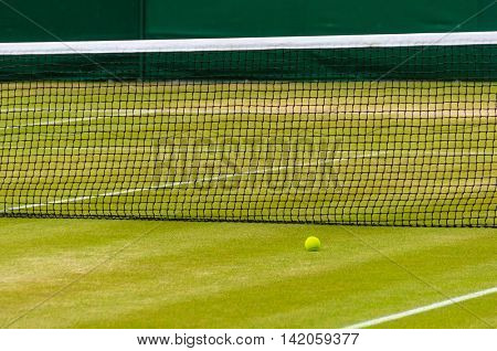 Tennis ball on a lawn tennis court