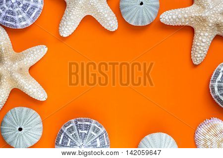 Summer Time Concept Frame With Starfish On Orange