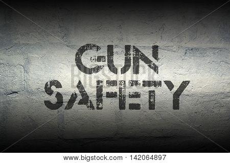 Gun Safety Gr