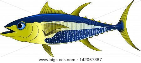 Blue tuna with yellow fins. Vector and illustration