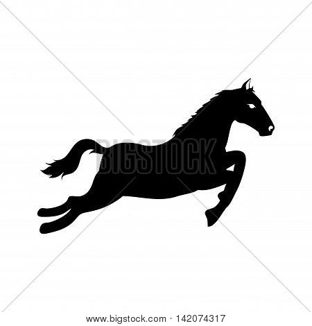 horse ride run equine speed stallion ranch west vector graphic isolated and flat illustration