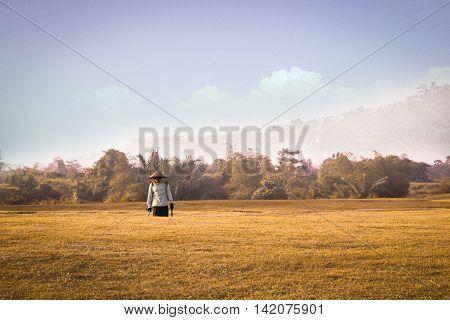 farmer walking after work in a wheat field