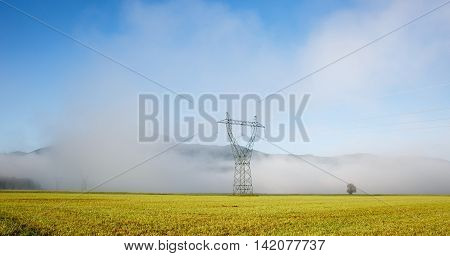 Big electricity high voltage pylon with power lines on a green grass in a foggy morning. Sustainable resources green energy energy and power industry concept.