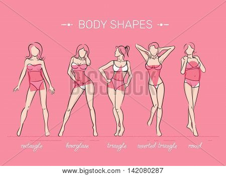 What is your body shape. Vector illustration of girls' figures. Women in bathing suits.