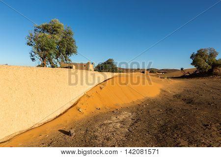 entrance to a Berber camp in the Sahara desert, Morocco