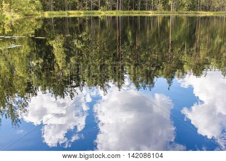 Clouds reflected in water. Cumulus clouds over the forest lake water.