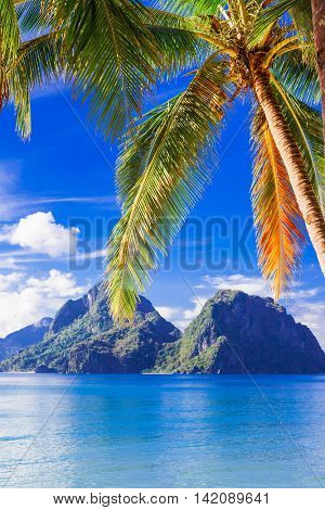 perfect tropical beach scenery - islands of Philippines, Palawan